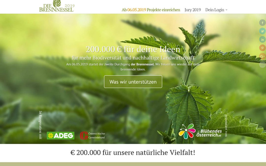 Nature conservation prize Die Brennnessel (The nettle)