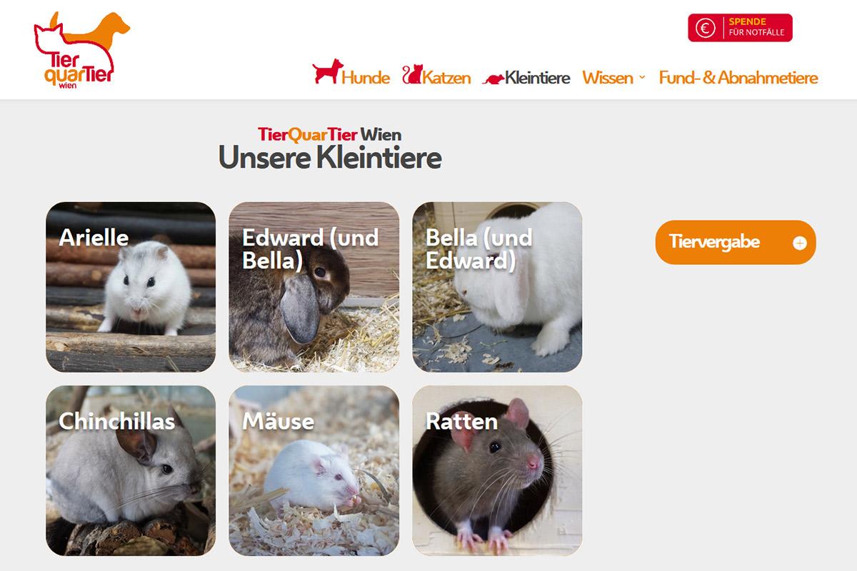 relaunch-website-tierquartier-wien-kleintiere-iservice-medien-und-werbeagentur-wien